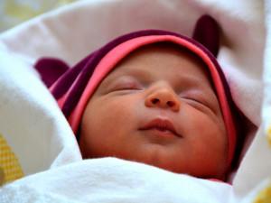 V písecké porodnici se loni narodilo téměř tisíc dětí. Nejvíce od roku 1990