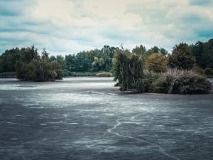 Lesy a rybníky mohou kácet u Vrbenských rybníků. Krajský úřad dal jejich žádosti zelenou