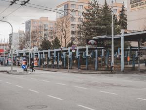 Modré loubí na Pražské půjde letos k zemi. Zmizí i přístřešky na Šumavě
