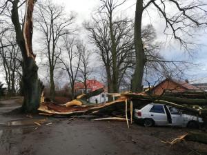 Lidé začínají sčítat škody způsobené vichřicí Sabine, jdou do desítek milionůn korun
