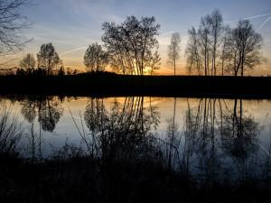 Lišovský rybník nedaleko Máje čeká obnova. Práce vyjdou na necelé dva miliony