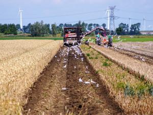 Jihočeská agrární komora shání roušky pro potravináře a zemědělce