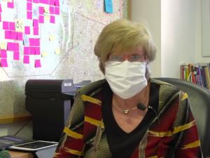 Jihočeskému kraji chybí podle hejtmanky trojkové respirátory