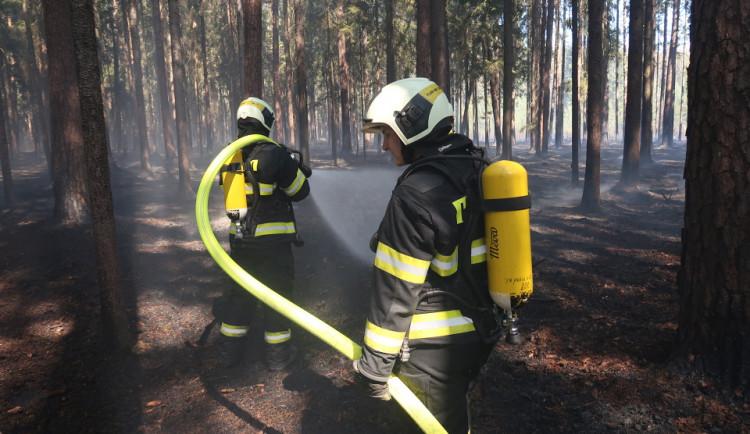 Na Táborsku hořely lesy, vyhlášen byl třetí stupeň požárního poplachu