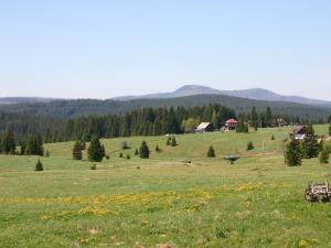Národní park Šumava o víkendu očekává tisíce návštěvníků, v terénu budou strážci