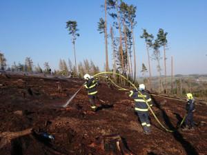 Hejtmanka Jihočeského kraje rozhodla o vyhlášení období zvýšeného nebezpečí vzniku požárů