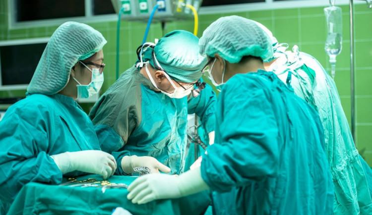 Jihočeské nemocnice začnou postupně obnovovat provoz