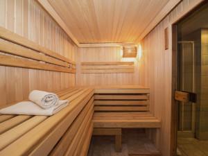 Vláda by měla co nejdříve povolit sauny. Posilují imunitu a teplota omezuje šíření viru, obhajují saunéři