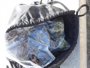 Drogy schované v klíčence i batohu vyčmuchal služební pes, osádku auta si převzali policisté
