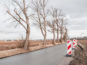 Příští týden začne rekonstrukce Plavské ulice, úplně uzavřena bude do poloviny prosince