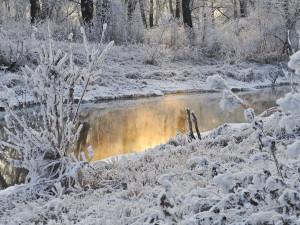 V Česku se ochladilo až o 20 stupňů, na Šumavě napadl sníh