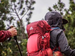 Národní park Šumava nabízí výlety do divočiny, návštěvníci se mohou vydat na bobří a vlčí výpravy