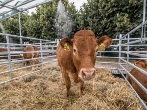 Zrušení Země živitelky může snížit prodej zvířat i techniky