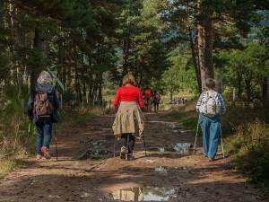 Na dovolenou v Česku se chystá 79 procent Čechů. Mezi nejvyhledávanějšími kraji je jih Čech