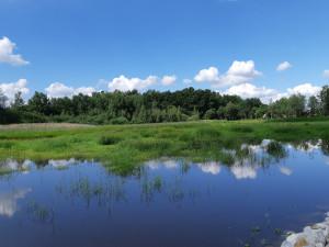 Obnova Lišovského rybníka je hotová. Práce vyšly na necelé dva miliony korun