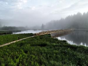 Naučná stezka Olšina představí návštěvníkům unikátní přírodní oblast, vhodná je i pro rodiny s dětmi