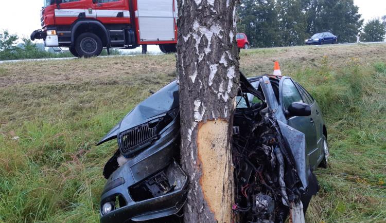Řidička nejspíš usnula za volantem, s autem narazila do stromu