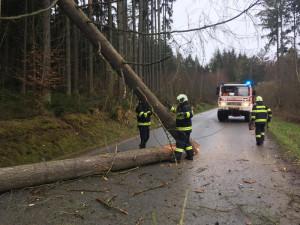 Jihočeští hasiči za sebou mají čtyřicet výjezdů, dva vlaky narazily do spadlého stromu