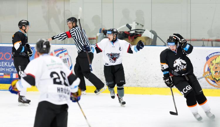 Hokejisté Black Dogs VŠTE chtějí v univerzitní lize opět překvapit