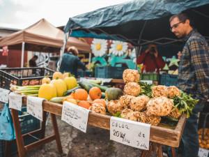 KULTURNÍ TIPY: Minimalismus v cestování, La La Land a farmářské trhy