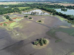 Rostliny mimo les u Vrbenských rybníků se mohou kácet, rozhodl krajský úřad