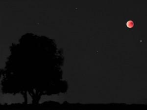Několik týdnů bude celou noc na obloze vidět Mars. Na konci měsíce se přidají další planety