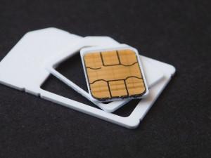 Jihočeský kraj chce žákům poskytnout 1300 SIM karet na výuku