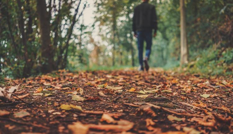 Jaký bude přelom října a listopadu? Teploty opět klesnou, na horách bude sněžit