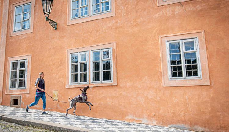KAROLÍNA CIPRO: Život ve zdravotnictví vyměnila za běhání se psy