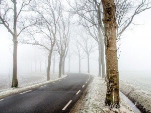 Na pravé zimní počasí si budeme muset počkat nejspíš do půlky ledna