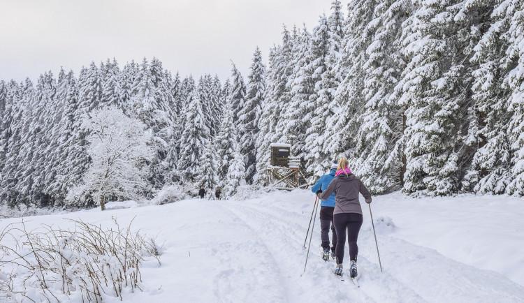 Na Šumavě jsou pro běžkaře upravené desítky kilometrů stop