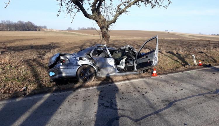 Na Českobudějovicku srazilo auto dva cyklisty. Oba na místě zemřeli
