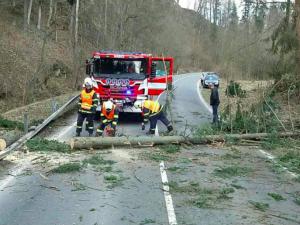 Čechy v sobotu zasáhne silný vítr. Hrozí pády stromů a škody na budovách