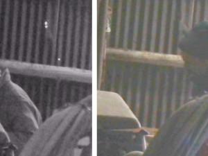 Policie pátrá po totožnosti muže ze snímku. Pohybovat by se měl po Mladovožicku