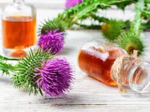 Detoxikace organismu: Kdy se do ní pustit a jak dlouhodobě udržet tělo bez škodlivých látek