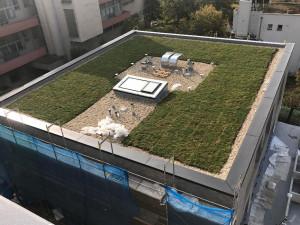 Tábor jako jedno z prvních měst v Česku udělá zelenou střechu na paneláku