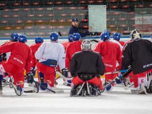 Hokejová reprezentace odehraje zápas s Rakouskem v Jindřichově Hradci. Sestavu doplní sedm debutantů