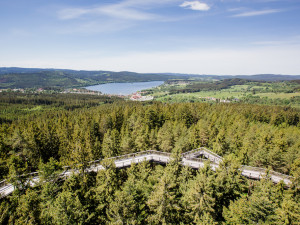 Ke Stezce korunami stromů už můžete vyrazit lanovkou. Od května je otevřeno i Království lesa