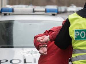 Opilý muž vyhrožoval výbuchem na letišti Václava Havla. Při zadržení hajloval