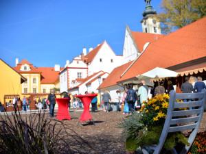 Slavnostní otevření Zahrady květů v borovanském klášteře je naplánováno na příští sobotu