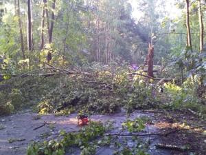 Hasiči museli kvůli bouřce evakuovat deset lidí, počet zásahů přesáhl čtyři stovky
