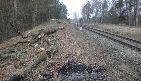 Úsek mezi Hlubokou nad Vltavou a Nemanicemi zprovoznila Správa železnic v poledne