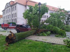 Českobudějovičtí radní vyčlenili na likvidaci škod po silné bouři milion korun