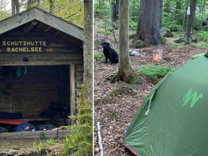 Strážci Bavorského lesa bojují s turisty. Chráněné území si pletou s kempem