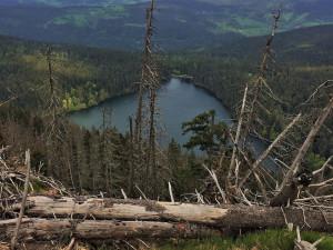 Národní park Šumava předloží ještě letos návrh, jaký bude režim v zónách