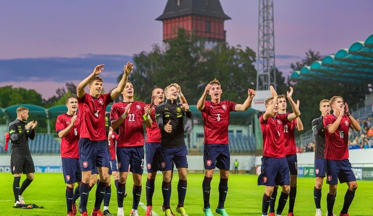 Stanou se Budějovice novým domovem lvíčat? Reprezentace si pochvaluje zázemí