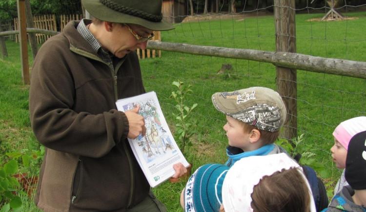 O lese je nejlepší učit v lese. Lesní pedagogika přibližuje děti k přírodě, říká Martina Skřivanová