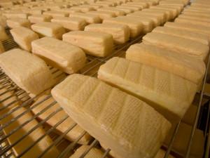 Mlékárna Madeta zdraží od ledna výrobky o dvě až tři procenta