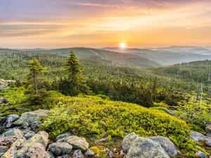 Bavorský les se u hranic s Českem rozšíří, zamíří tam tři miliony euro