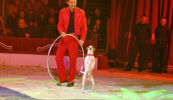 Švýcarský Cirkus Louis Knie v Budějcích